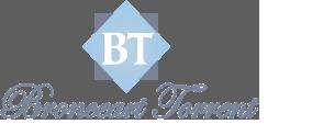 Bronceart Torrent