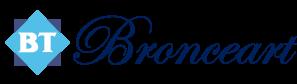 Bronceart
